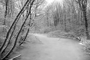 View on the frozen river 2- BW by steppeland