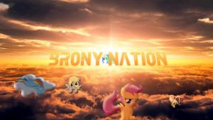 Brony Nation Banner No. 6 wallpaper by RE-ACTION1982
