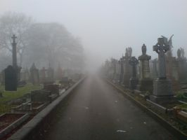 Foggy at the cemetery 11a by rudeturk