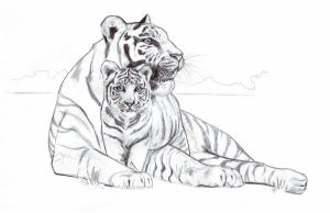 white tiger and cub by emmawood