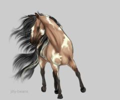 Andalusian Horse by vixentheangryfox