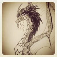 Dragon Ink Drawing   - Close Up by LookAliveHolly