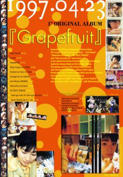 Grapefruit 'Information Ad' I by countdown65