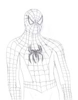 Spider-Man (Tobey Maguire) by homer311