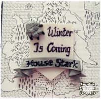 House Stark brooch by Galadriel89