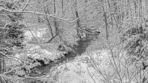 Winter Stream by UriahGallery