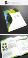 Letter brochure by demorfoza