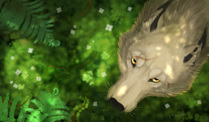 Looking up by cloudstar-wolf