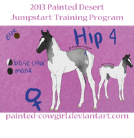 2013 Jumpstart Program Hip 4 by painted-cowgirl
