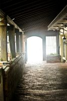 Light at the end of the tunnel by AndersonPhotography