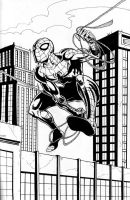 11-22 Spidey by hdub7