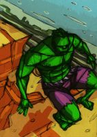 the hulk by Equattro