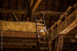 the old barn by TLO-Photography