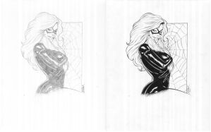 Black Cat commission 2 by TonyKordos