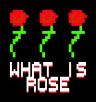 WHAT IS ROSE. by boobookittyfuck