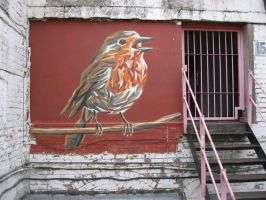 H block robin by GRAFFOFLARGE