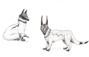 Finley Concepts by GoWaterTribe