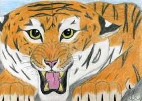 Crouching Tiger - finished. by SilverSoul1496