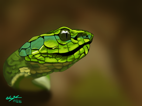 Large scale Pitviper by Azhram