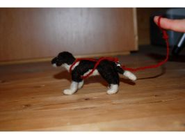 Emilka needle felted harness by Pawkeye