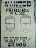 wanted poster by louisesaunders