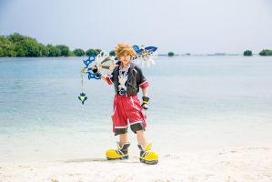 Sora ~ Kingdom Hearts 3D by Echow88