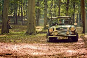 Mini... by lococso