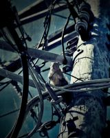 Destitute Suicidal Squirrel by Thors-Hammer77