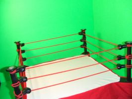 Custom Boxing Ring by jaredjlee
