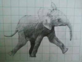 Baby Elephant by Art-Allure