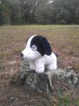 .: GB's New Stump | Ginga Plush :. by BeachBumDunkin