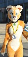 006 Sofia Lioness at EF16 by basil-lion