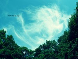 Fly in the sky. by lucc4