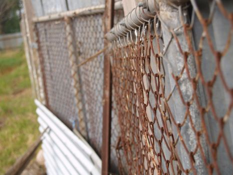 The Rusted Fence by dottiPhotography