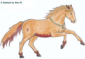 Sassisaxi-horse version by Anna-XIII
