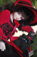 Lady in red by aniszyma