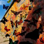 Graffiti Butterflies by exprafx