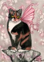 Cat Fairy Winged Calico ACEO by candcfantasyart
