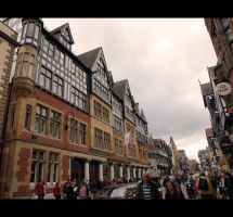 CHESTER 3 by awjay