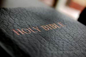 Bible by Andrew-Bowermaster
