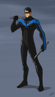 Nightwing by Ferroconcrete247