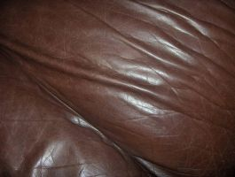 Brown Leather 03..... by Shadukha-Stock
