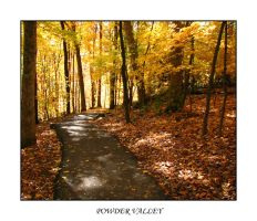 The Golden Path by bamako