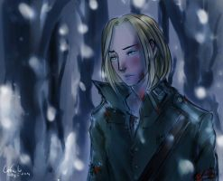 Once upon a December --Russia and Poland--- by Nati13321