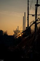 Into The Lines by Estranged89