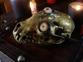 Brass creature skull- Tri-Eye by missmonster