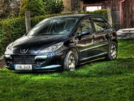 peugeot in HDR by Tedinecka