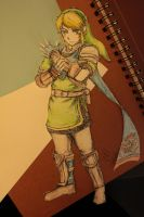 The Legend of Zelda Hyrule Warriors: Link by Atlus154274