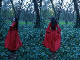 Petit chaperon rouge 2 by magikstock