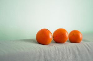 Oranges by marialivia16